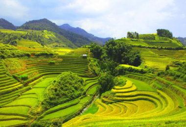 Pu Luong Travel Tours Trekking Homestay